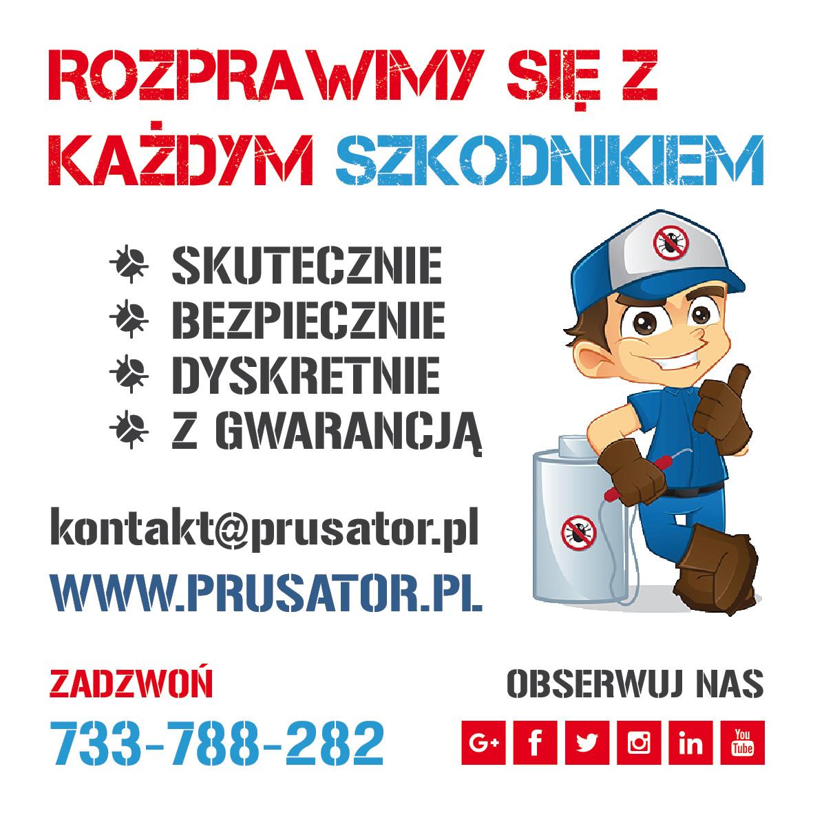 Odpluskwianie, Odpluskwianie Warszawa, Dezynsekcja, Dezynsekcja Warszawa, Deratyzacja, Deratyzacja Warszawa, Dezynfekcja, Dezynfekcja Warszawa, Zwalczanie, zwalczanie pluskwy, zwalczanie pluskiew, zwalczanie pluskiew Warszawa, zwalczanie pluskwy Warszawa, zwalczanie myszy, zwalczanie myszy Warszawa, zwalczanie szczurow, zwalczanie szczurow Warszawa, zwalczanie prusakow, zwalczanie prusakow Warszawa, zwalczanie karaluchow, zwalczanie karaluchow Warszawa, zwalczanie szkodnikow, zwalczanie szkodnikow Warszawa, zwalczanie owadow, zwalczanie owadow Warszawa, pestcontrol, pest control, bedbug, bed bug, bed bugs, Warszawa, Warsaw, London, Londyn, Berlin, prusator, prusator.pl