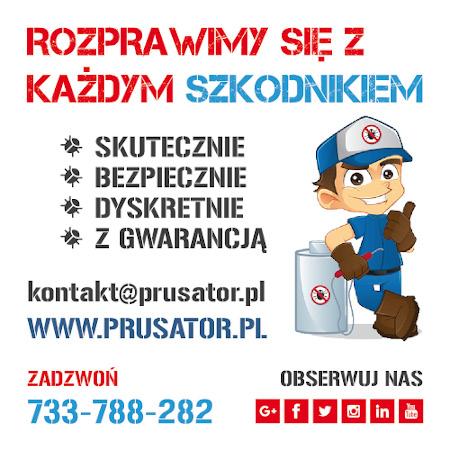 Prusator -odpluskwianie, dezynsekcja, deratyzacja, dezynfekcja, zwalczanie pluskwy, zwalczanie prusaków, zwalczanie szczurów, myszy, ozonowanie Warszawa